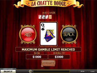 Red or Black Card Gamble Feature