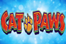 Cat Paws Slot