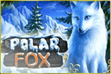 Polar Fox Slot