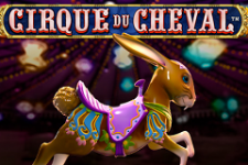 Cirque du Cheval Slot