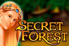 Secret Forest Slot