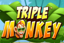 Triple Monkey Slot