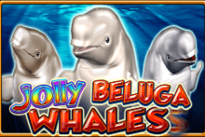 Jolly Beluga Whales Slot