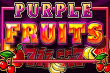 Purple Fruits Slot