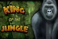 King of the Jungle Slot