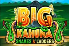 Big Kahuna Snakes & Ladders Slot